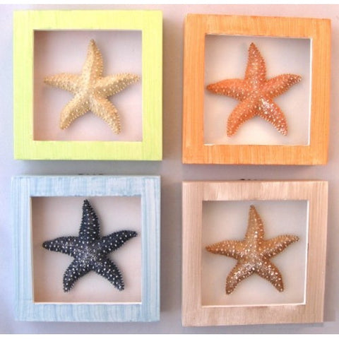 4 Starfish Shadow Boxes - ArtsiHome