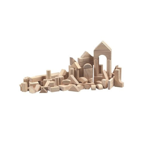 76 Piece Unit Block Set - ArtsiHome