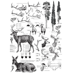 "Redesign with Prima - Redesign Decor Transfers® - Deer size 23""x 33"""