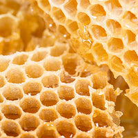 Honey Featured Ingredient - L'Occitane