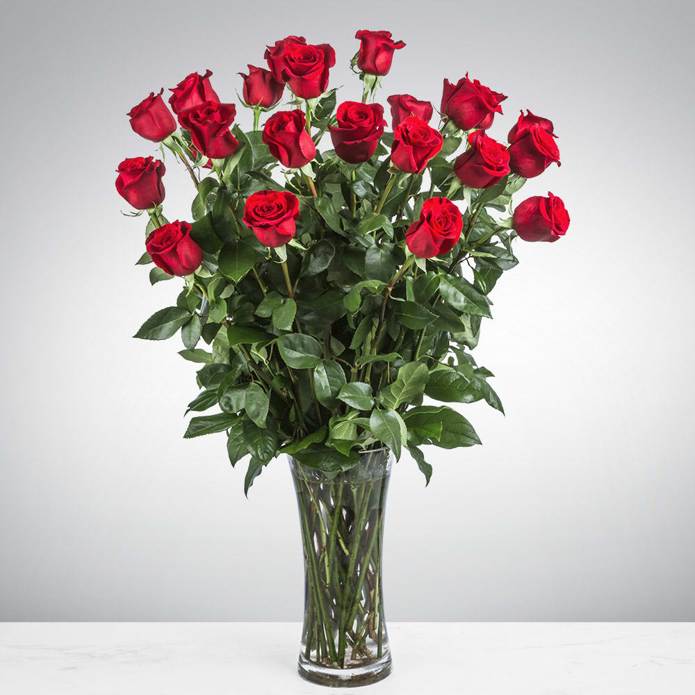 Two Dozen Long Stemmed Roses By BloomNation™