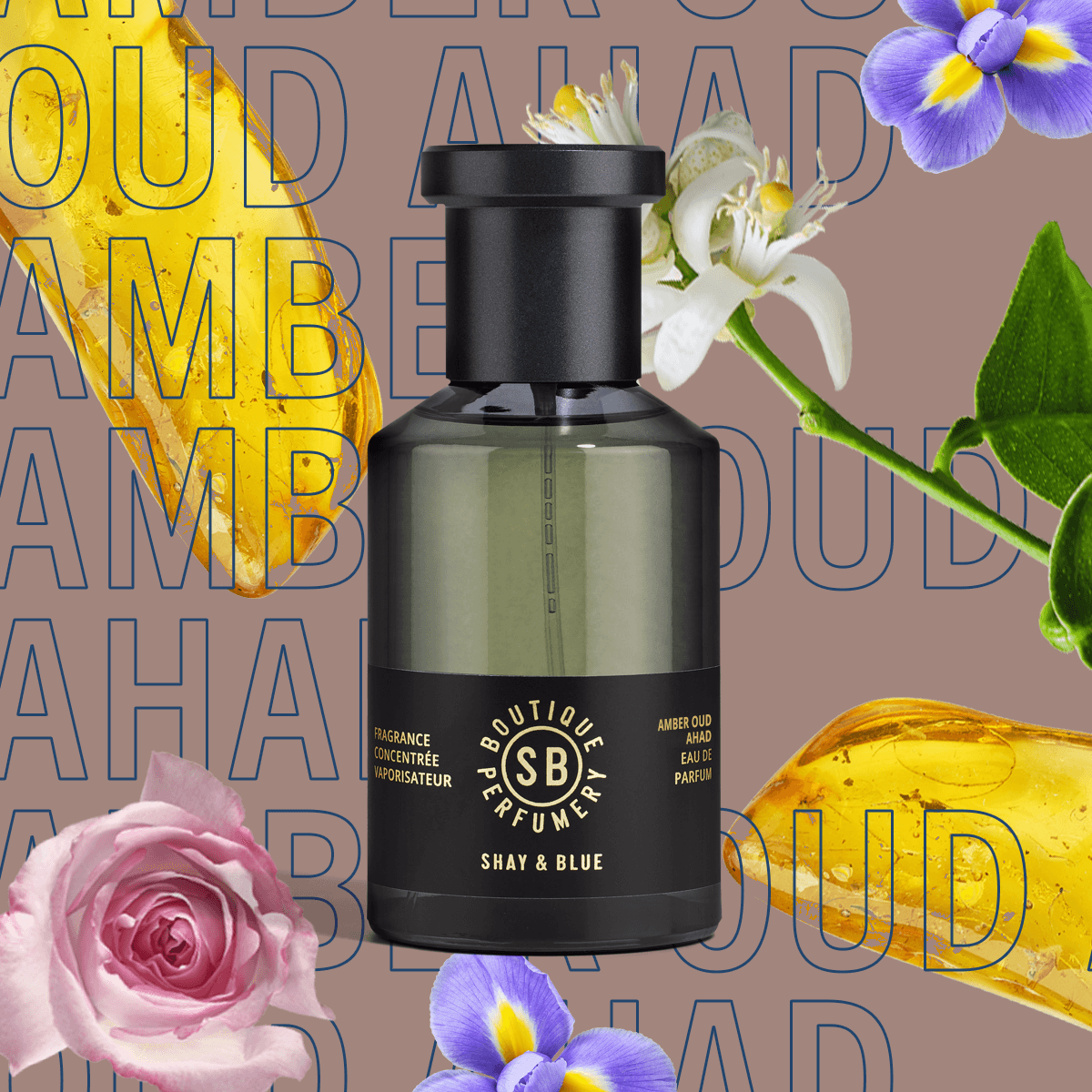 Amber Oud Ahad Fragrance Concentrate 100ml | Richly opulent amber with rare oud. Kissed with elegant iris and red rose. | Clean All Gender Fragrance | Shay & Blue