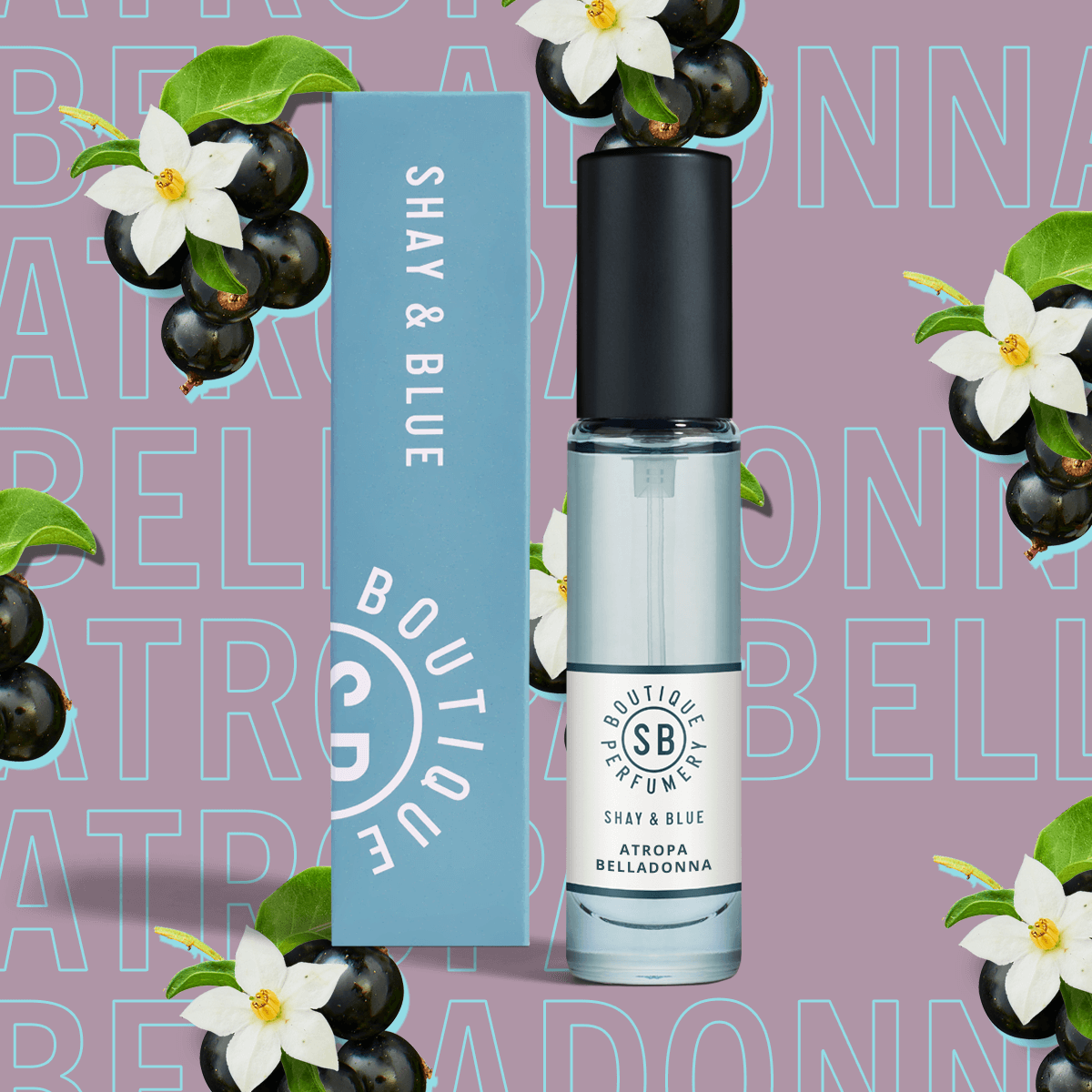 Atropa Belladonna Fragrance 10ml | Cassis berries and jasmine dance with layers of depth from patchouli and vanilla. | Clean All Gender Fragrance | Shay & Blue