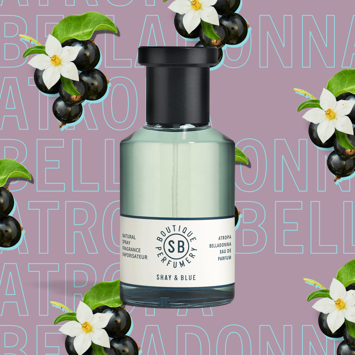 Atropa Belladonna Fragrance 100ml | Cassis berries and jasmine dance with layers of depth from patchouli and vanilla. | Clean All Gender Fragrance | Shay & Blue