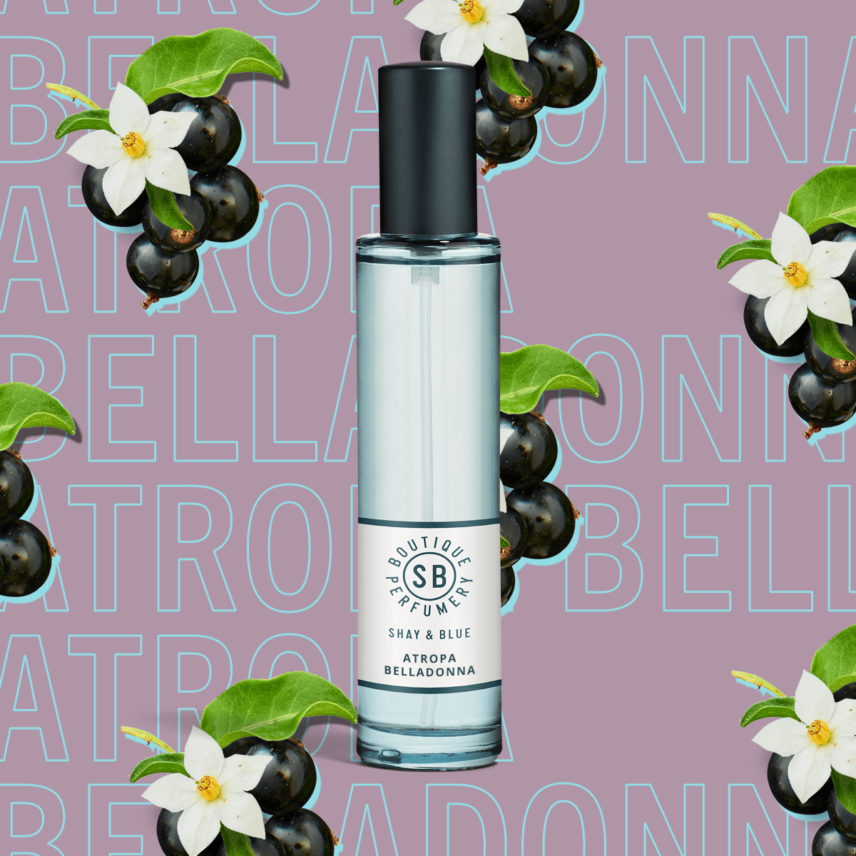 Atropa Belladonna Fragrance 30ml | Cassis berries and jasmine dance with layers of depth from patchouli and vanilla. | Clean All Gender Fragrance | Shay & Blue
