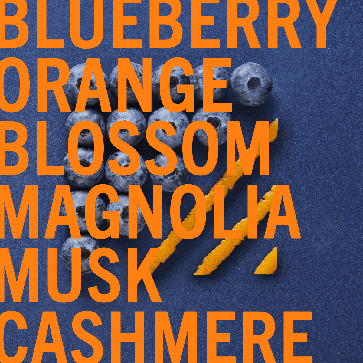 Blueberry Musk Fragrance 30ml | Soft blueberry & orange blossom fused with magnolia and silky cashmere. | Clean All Gender Fragrance | Shay & Blue