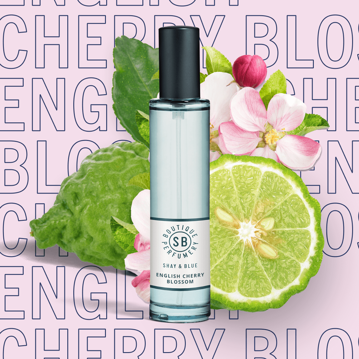 English Cherry Blossom Fragrance 30ml | Airy blossom with black cherries, fig and bergamot for a sparkling citrus lift. | Clean All Gender Fragrance | Shay & Blue