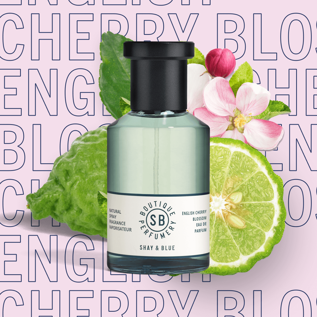 English Cherry Blossom Fragrance 100ml | Airy blossom with black cherries, fig and bergamot for a sparkling citrus lift. | Clean All Gender Fragrance | Shay & Blue