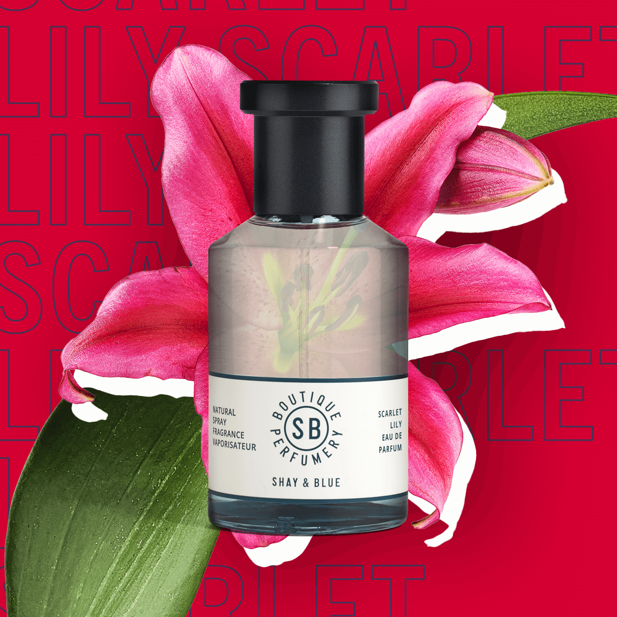 Scarlet Lily Fragrance 100ml | Big Blooms of Scarlet lily with undertones of ylang ylang. | Clean All Gender Fragrance | Shay & Blue