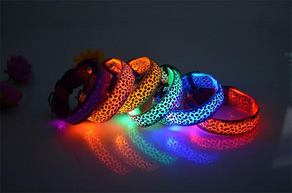 Lighted  Dog Collar