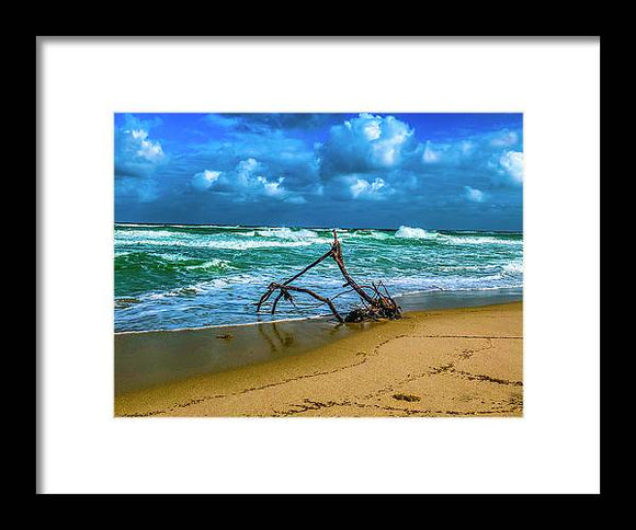 Ship Wreck Framed Print by Laura Lisa Designs