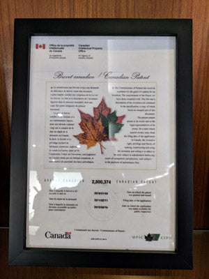 MLILY Canadian Patent