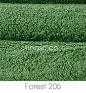 Forest 205