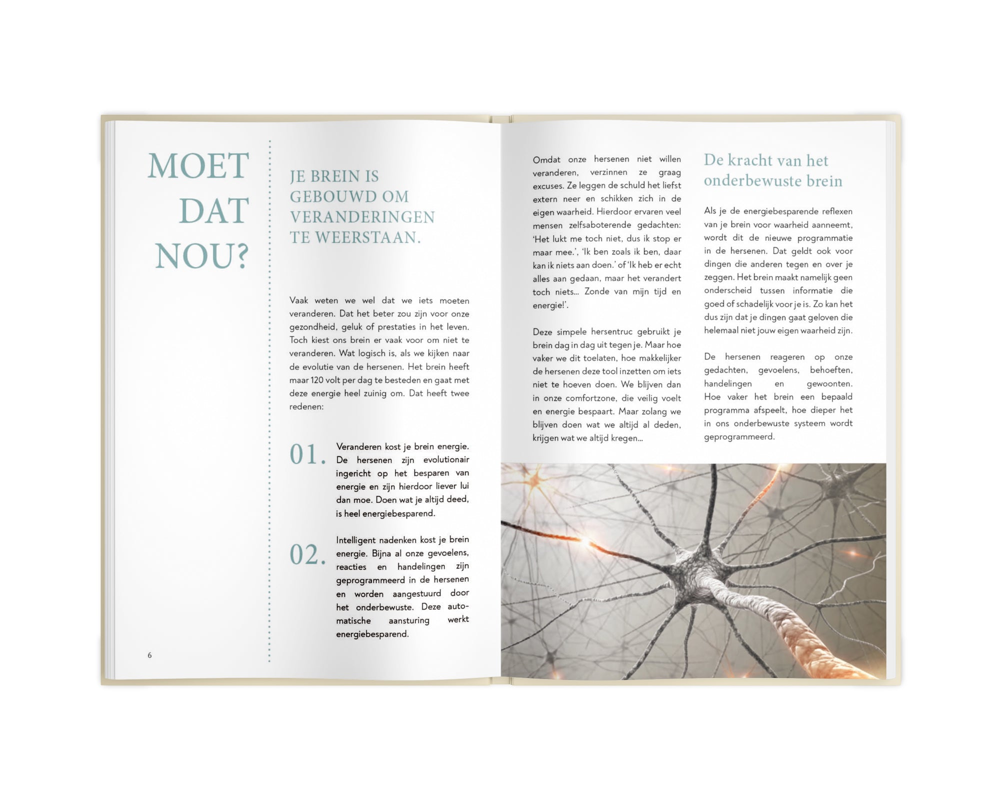 Brain Balance Journal - Mosgroen (Herfst)