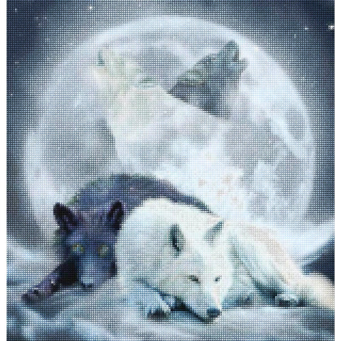 5d Diamond Painting Wolf