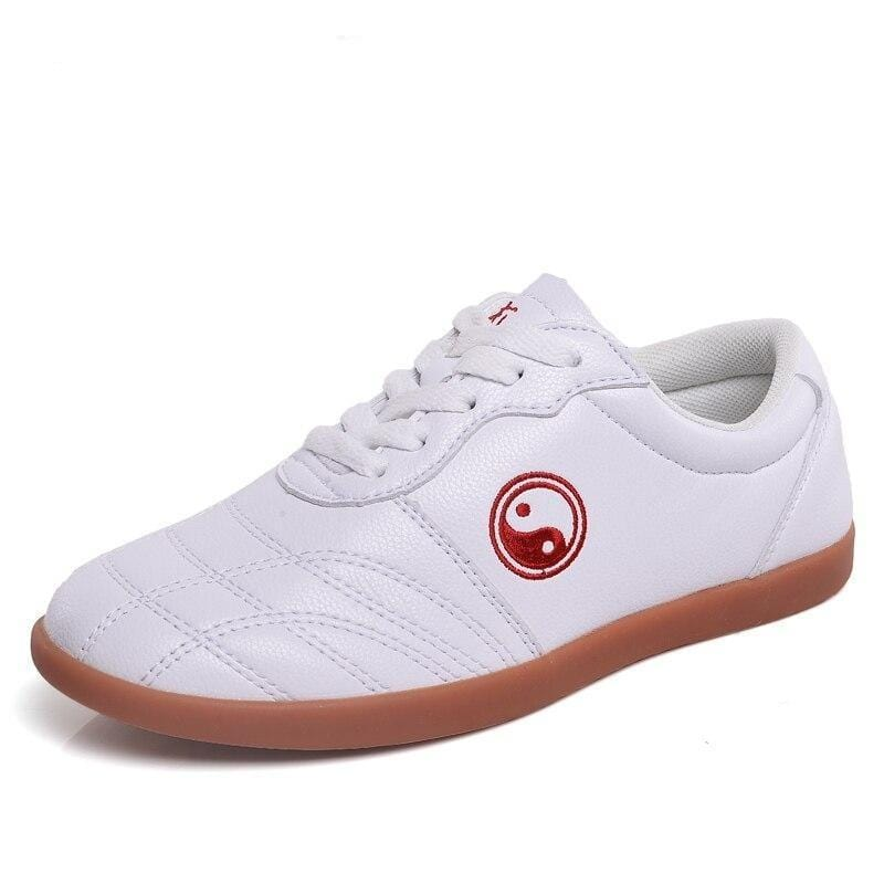 tai chi shoes leather