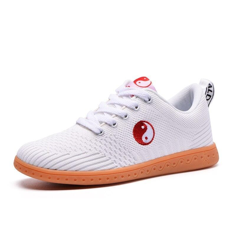 Chinese Tai Chi Shoes