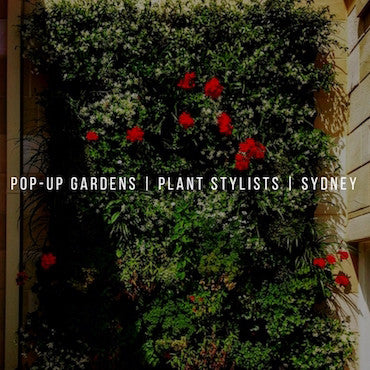 Party Kit Company planning guide | Pop Up Gardens