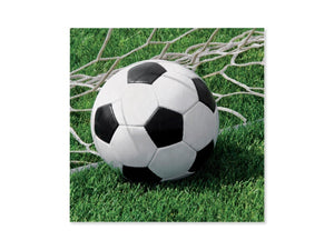 Soccer themed lunch napkins and soccer party supplies online