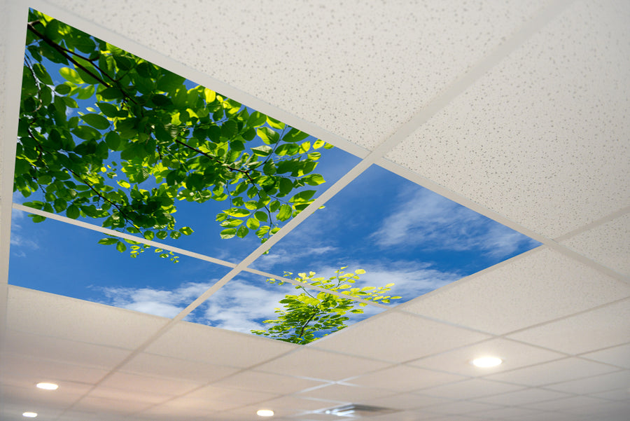 5155 Sky & Trees Ceiling Tile