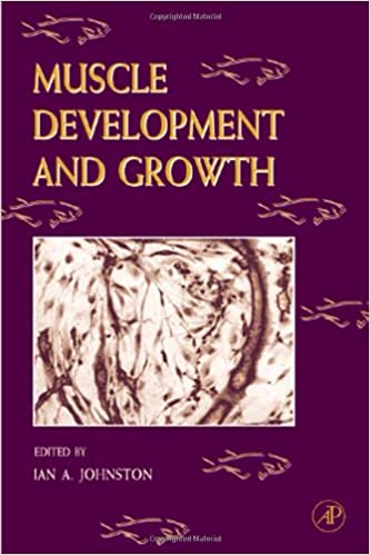 Fish Physiology: Muscle Development and Growth: 18 Hoar, William S.; Farrell, Anthony P. and Johnston, Ian A. by Johnstone, Ronald L., 2000