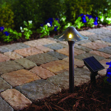 Load image into Gallery viewer, Solar Oil Rubbed Bronze Outdoor Integrated LED Mushroom Landscape Path Light With Remote Solar Panel (2-Pack)