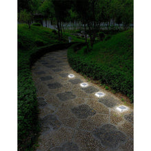 Load image into Gallery viewer, Solar Powered Stainless Steel Outdoor Integrated LED Pathway Light (2-Pack)