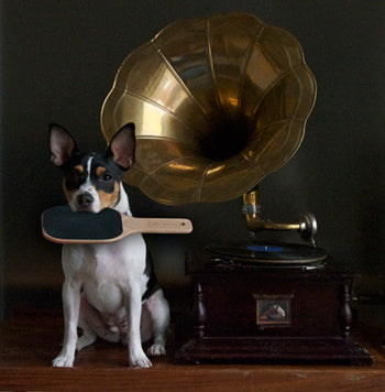Ollie can't carry a tune… but,