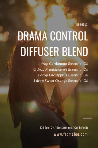 4 Work-from-Home Essential Oil Diffuser Blends