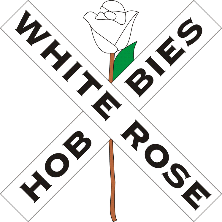 R/C Drag Car Parts and Accessories — White Rose Hobbies