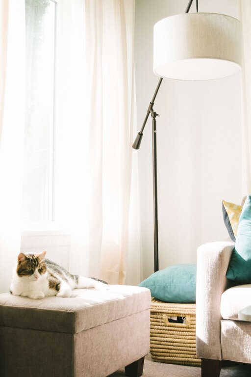 A stable metal floor lamp is not only your cat's health protector but also a fine decor for interior space