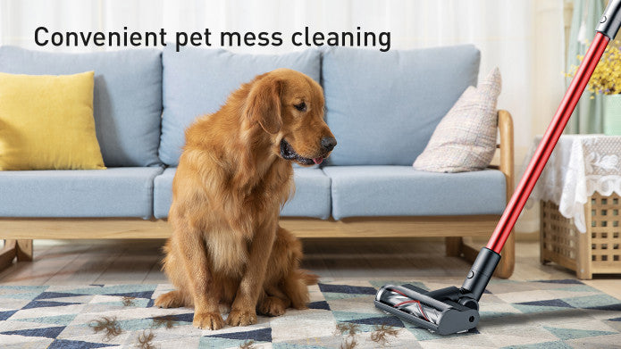 Convenient pet mess cleaning