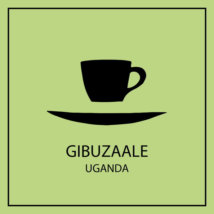 Floating cup and saucer logo with Gibuzaale Uganda coffee avatar.
