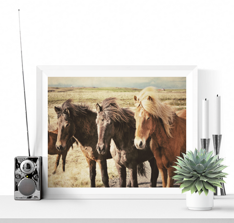 3 Horses Pose Photograph Printable