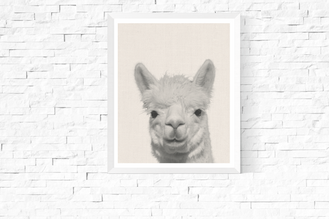 Alpaca Photograph Wall Art Printable