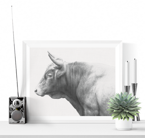 Bull Photographic Printable