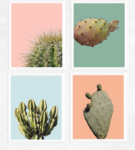 Cactus Art Printables Set of 4