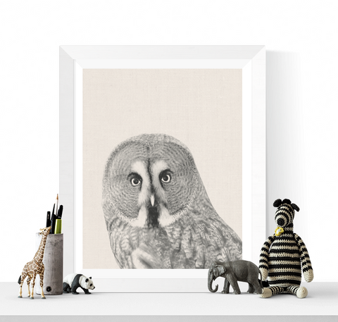 Owl Photographic Printable Black and White