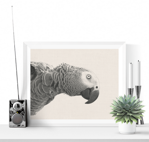 Parrot Photographic Printable Black and White