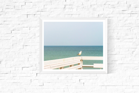 All by Myself Seagull Photograph Printable
