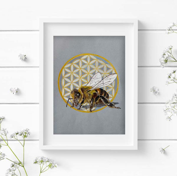 honey bee pencil drawing in a white frame