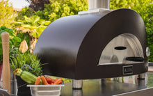 Load image into Gallery viewer, Alfa ONE Gas Pizza Oven - Indigo Pool Patio BBQ