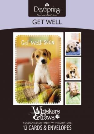 Image of BOXED CARD GW WHISKERS & PAWS other