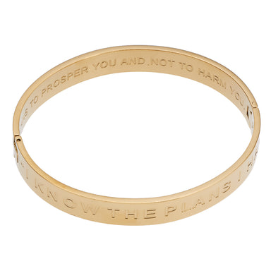 Image of I Know The Plans Hinged Bangle Bracelet other