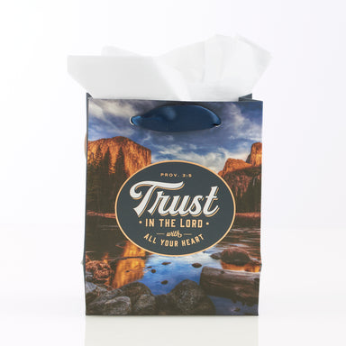 Image of Trust in the Lord Extra Small Gift Bag – Proverbs 3:5 other