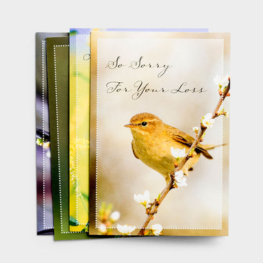 Image of Sympathy - Comforting Thoughts - 12 Boxed Cards, KJV other