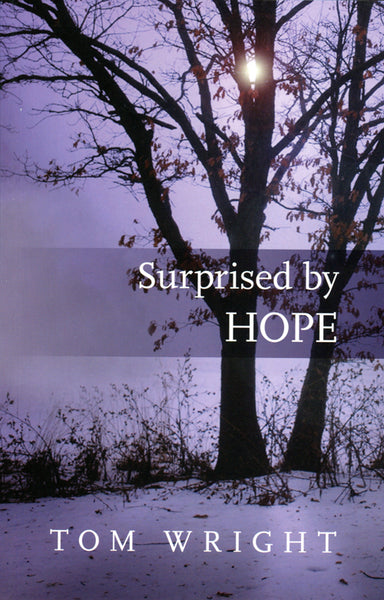 Image of Surprised by Hope other