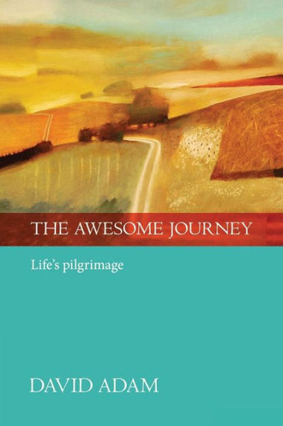 Image of The Awesome Journey other