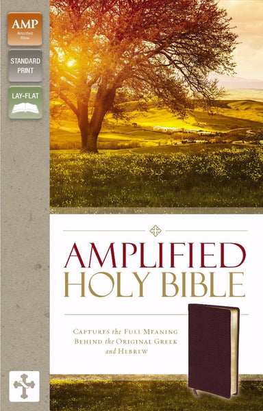 Image of Amplified Thinline Holy Bible: Burgundy, Bonded Leather other