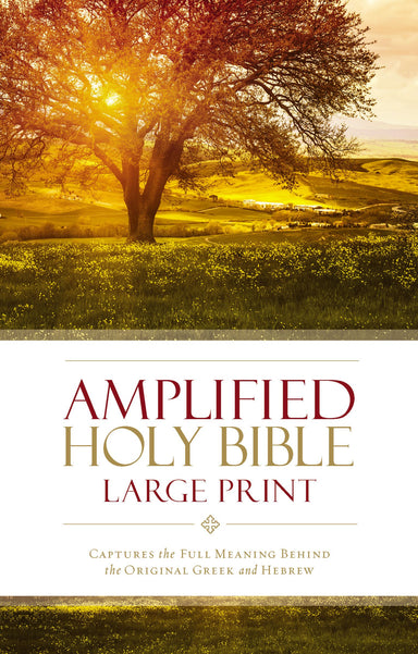 Image of Amplified Bible, Brown, Hardback, Large Print, Footnotes, Book Introductions, Bibliography, Glossary, Devotional Insights other